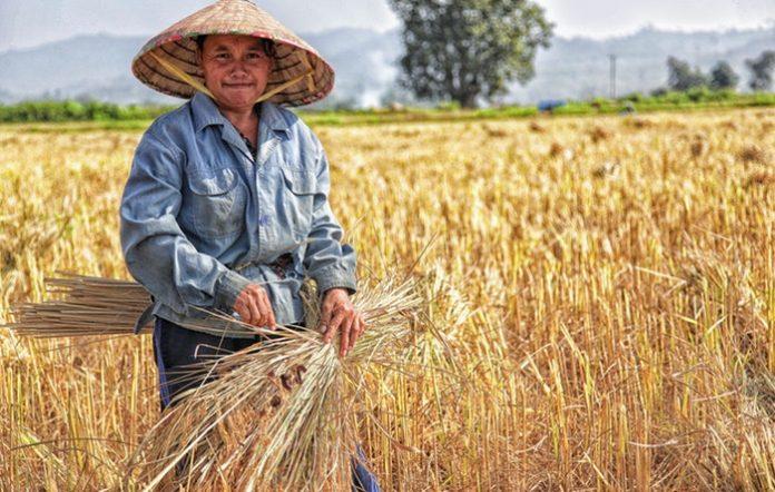 Rural Economy Funding Scheme For Bumiputera Entrepreneurs